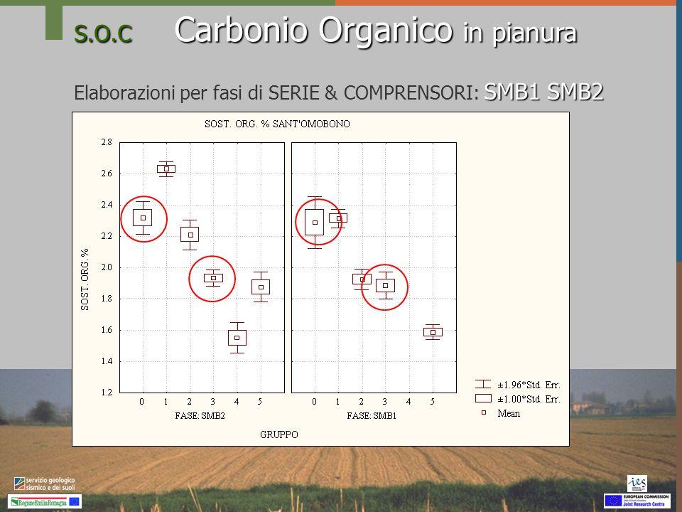 S.O.C Carbonio Organico in pianura Conclusione Per migliorare accuratezza della stima della dotazione in carbonio organico dei suoli della pianura emiliano romagnola è opportuno considerare -lunità tipologica di suolo: serie e fase di serie e -il comprensorio agricolo
