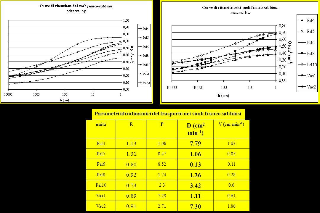 Parametri idrodinamici del trasporto nei suoli franco sabbiosi unitàRP D (cm 2 min -1 ) V (cm min -1 ) Pal4 1.13 1.06 7.79 1.03 Pal5 1.31 0.47 1.06 0.05 Pal6 0.80 8.52 0.13 0.11 Pal8 0.92 1.74 1.36 0.28 Pal10 0.73 2.3 3.42 0.6 Vas1 0.89 7.29 1.11 0.61 Vac2 0.91 2.71 7.30 1.86