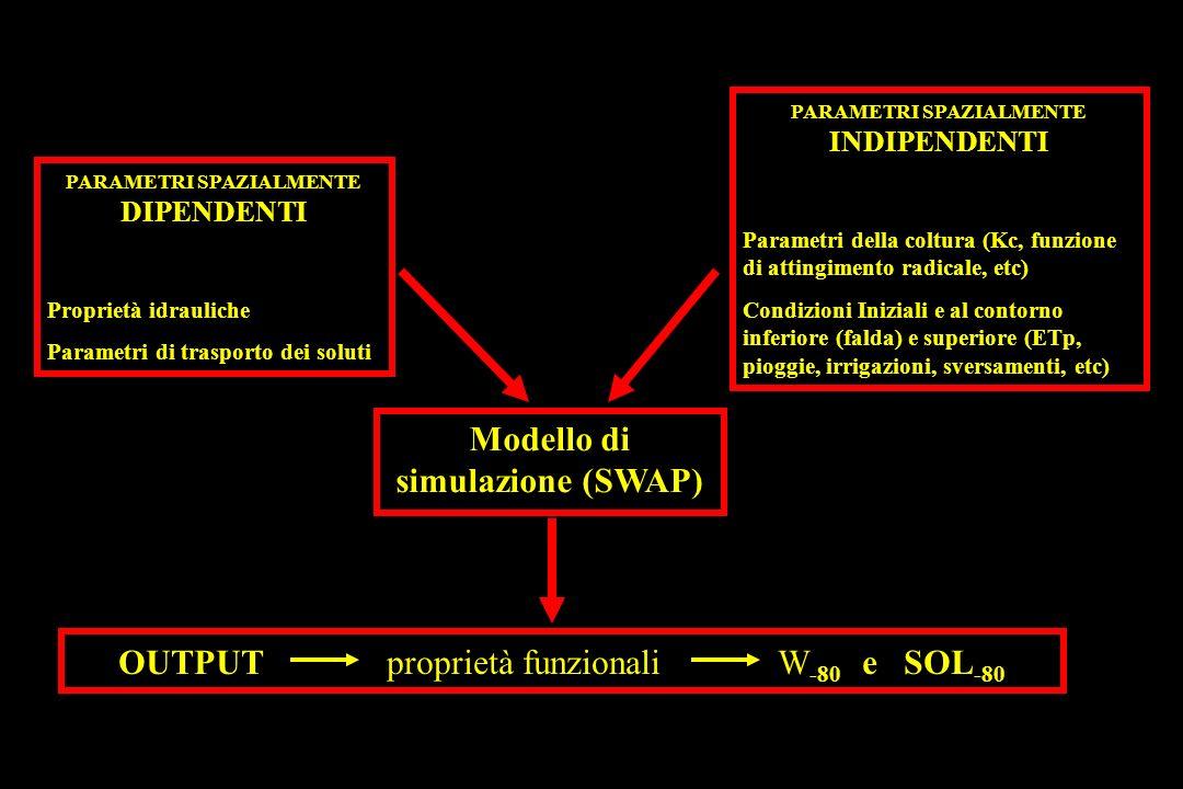 Modello di simulazione (SWAP) OUTPUT proprietà funzionali W -80 e SOL -80 PARAMETRI SPAZIALMENTE DIPENDENTI Proprietà idrauliche Parametri di trasporto dei soluti PARAMETRI SPAZIALMENTE INDIPENDENTI Parametri della coltura (Kc, funzione di attingimento radicale, etc) Condizioni Iniziali e al contorno inferiore (falda) e superiore (ETp, pioggie, irrigazioni, sversamenti, etc)