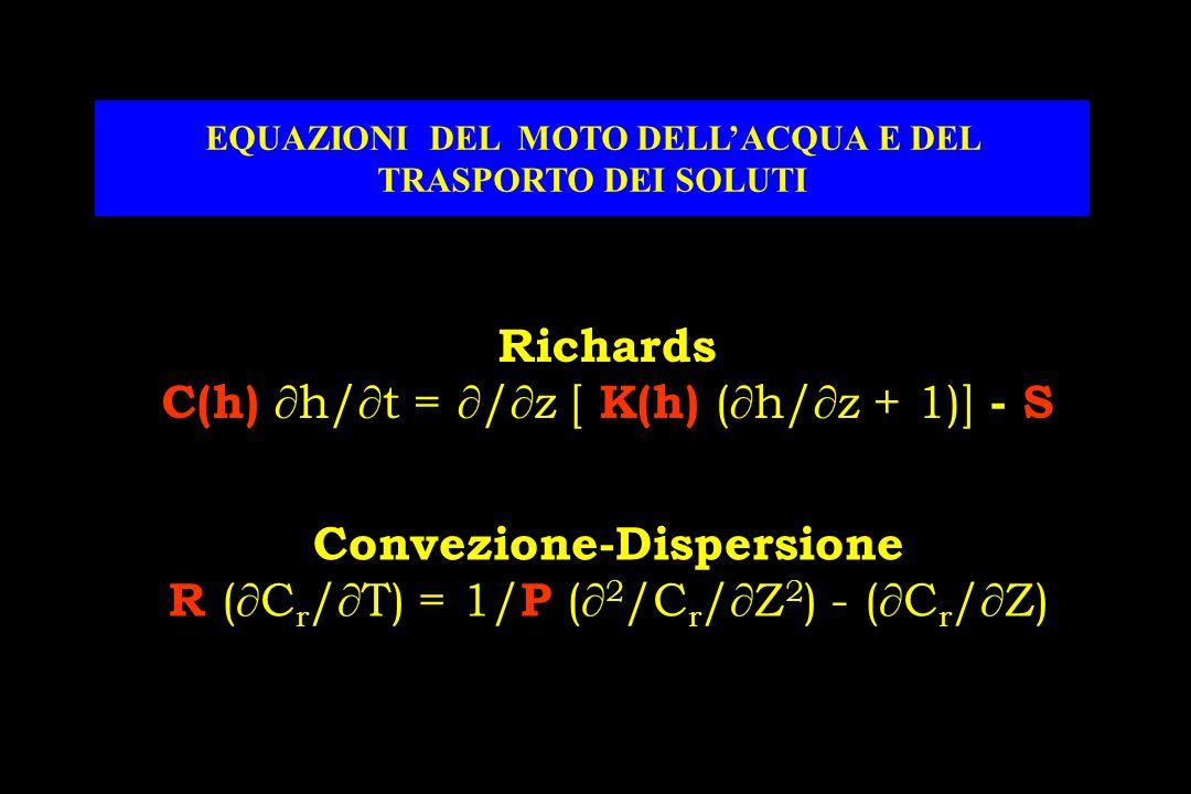 Richards C(h) h/ t = / z [ K(h) ( h/ z + 1)] - S EQUAZIONI DEL MOTO DELLACQUA E DEL TRASPORTO DEI SOLUTI Convezione-Dispersione R ( C r / T) = 1/ P ( 2 /C r / Z 2 ) - ( C r / Z)