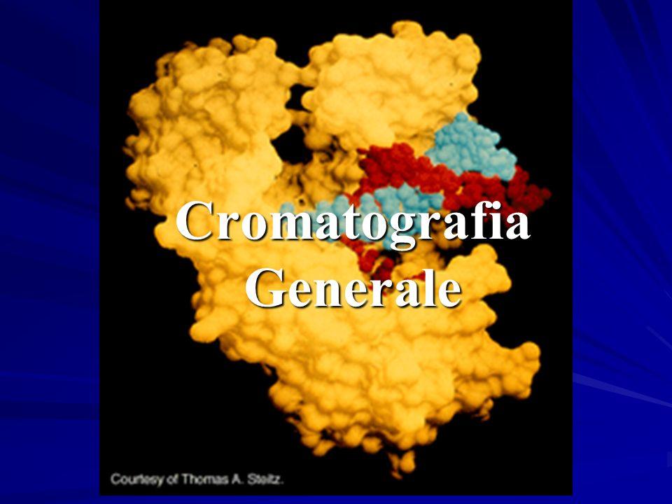 Adsorbimento PartizioneScambio ionico Cromatografia – Meccanismo di Separazione