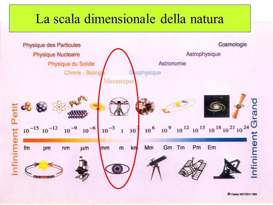 La scala dimensionale della natura Mecanique