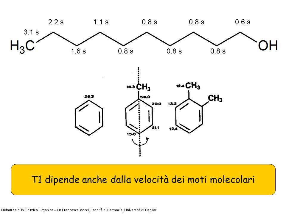 T1 dipende anche dalla velocità dei moti molecolari 3.1 s 2.2 s 1.6 s 1.1 s0.8 s 0.6 s