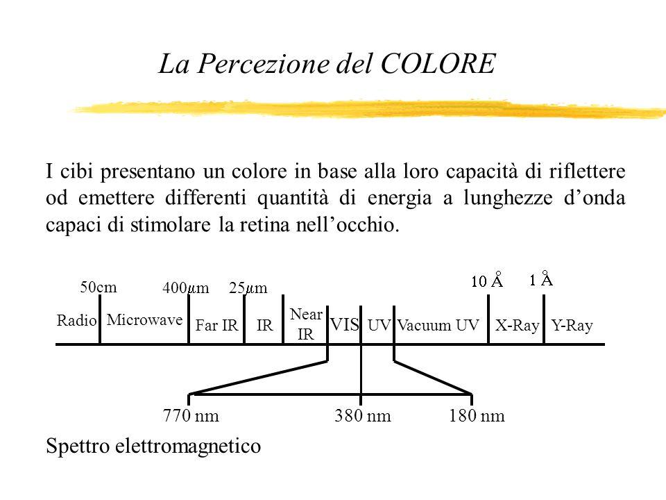 I cibi presentano un colore in base alla loro capacità di riflettere od emettere differenti quantità di energia a lunghezze donda capaci di stimolare