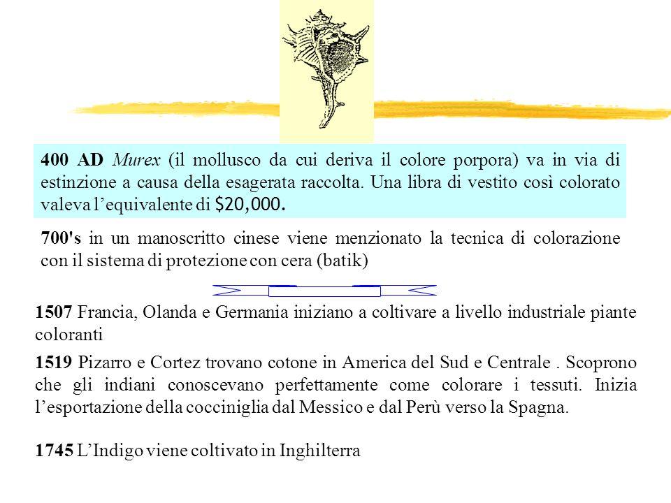 ColoreC.E.E.
