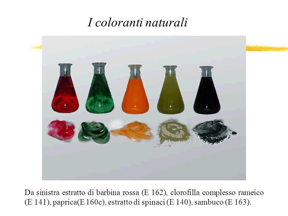 Da sinistra estratto di barbina rossa (E 162), clorofilla complesso rameico (E 141), paprica(E 160c), estratto di spinaci (E 140), sambuco (E 163). I
