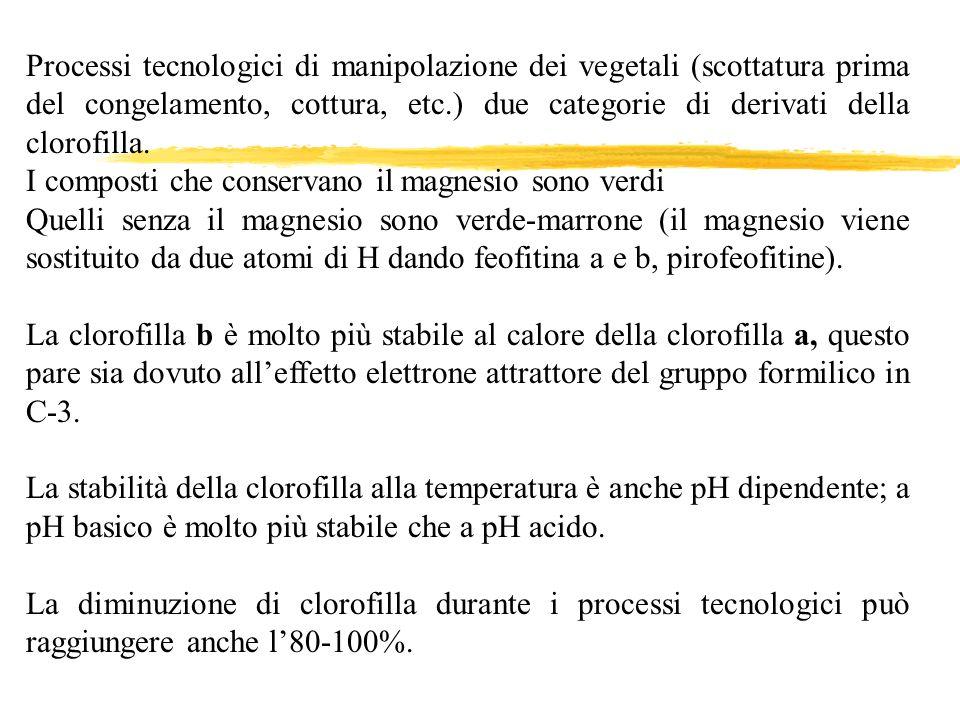 Processi tecnologici di manipolazione dei vegetali (scottatura prima del congelamento, cottura, etc.) due categorie di derivati della clorofilla. I co