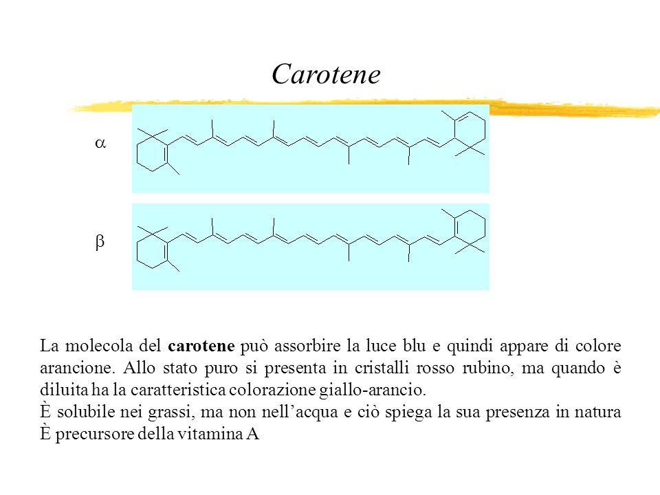 La molecola del carotene può assorbire la luce blu e quindi appare di colore arancione. Allo stato puro si presenta in cristalli rosso rubino, ma quan