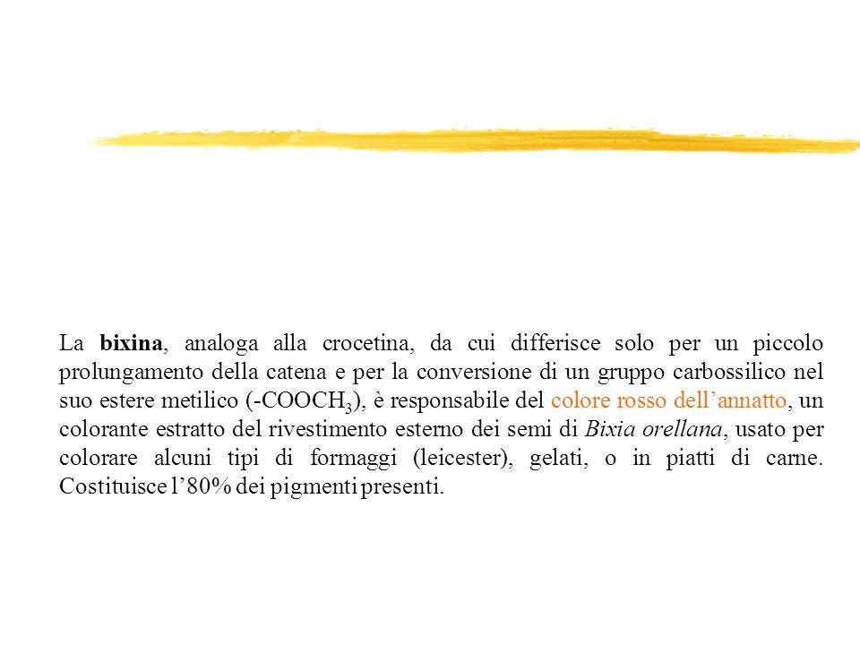 La bixina, analoga alla crocetina, da cui differisce solo per un piccolo prolungamento della catena e per la conversione di un gruppo carbossilico nel