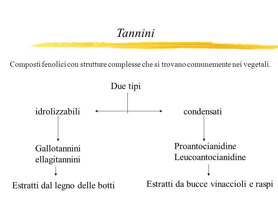 Tannini Composti fenolici con strutture complesse che si trovano comunemente nei vegetali. Due tipi condensatiidrolizzabili Proantocianidine Leucoanto