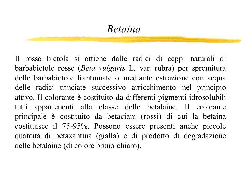 Betaina Il rosso bietola si ottiene dalle radici di ceppi naturali di barbabietole rosse (Beta vulgaris L. var. rubra) per spremitura delle barbabieto