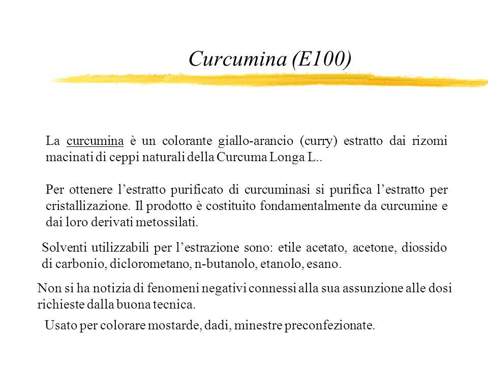 Curcumina (E100) La curcumina è un colorante giallo-arancio (curry) estratto dai rizomi macinati di ceppi naturali della Curcuma Longa L.. Per ottener