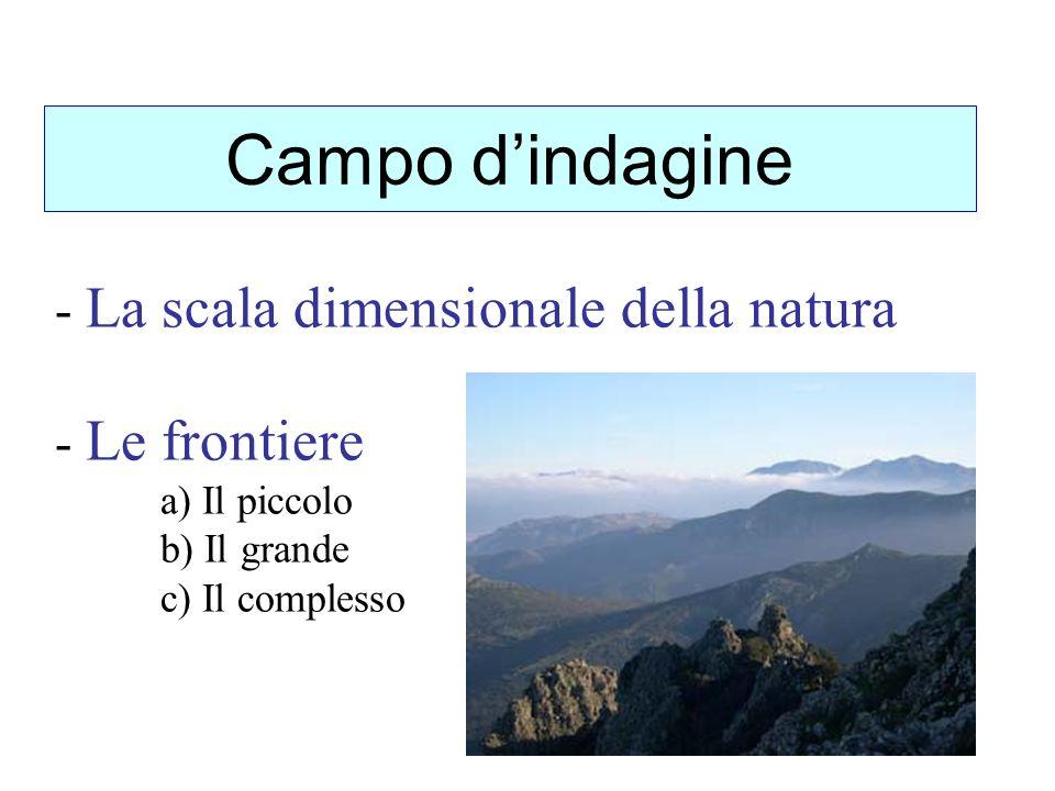 - La scala dimensionale della natura - Le frontiere a) Il piccolo b) Il grande c) Il complesso Campo dindagine
