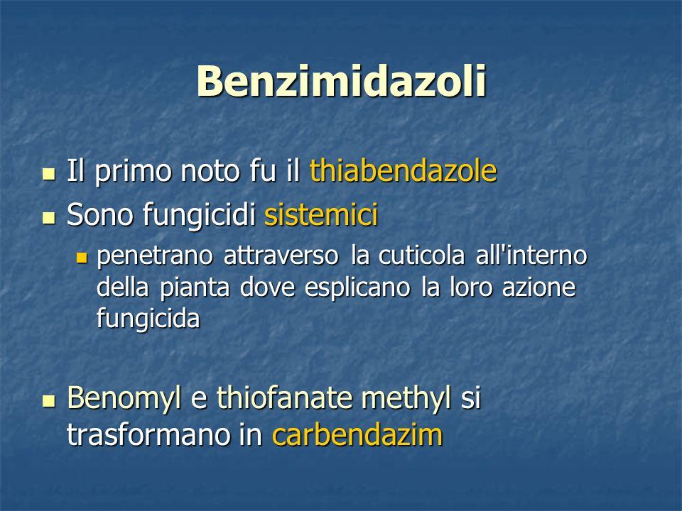 Benzimidazoli Il primo noto fu il thiabendazole Il primo noto fu il thiabendazole Sono fungicidi sistemici Sono fungicidi sistemici penetrano attraver