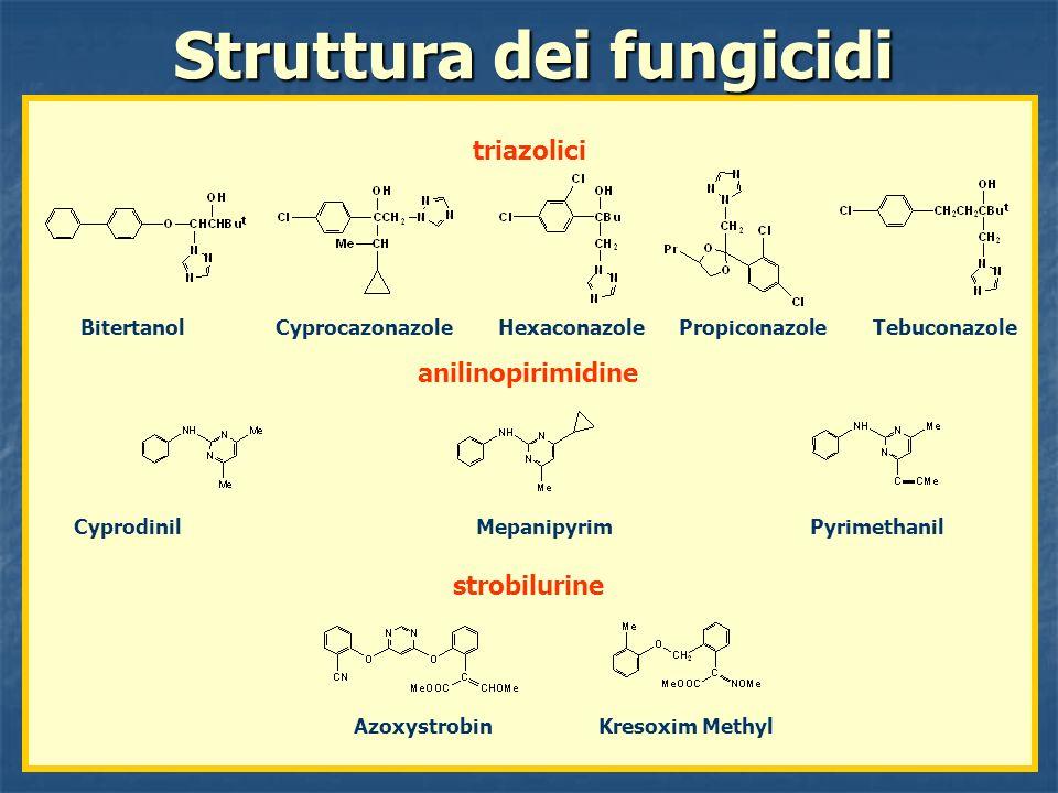 Bitertanol Cyprocazonazole Hexaconazole Propiconazole Tebuconazole Struttura dei fungicidi triazolici anilinopirimidine strobilurine Cyprodinil Mepani
