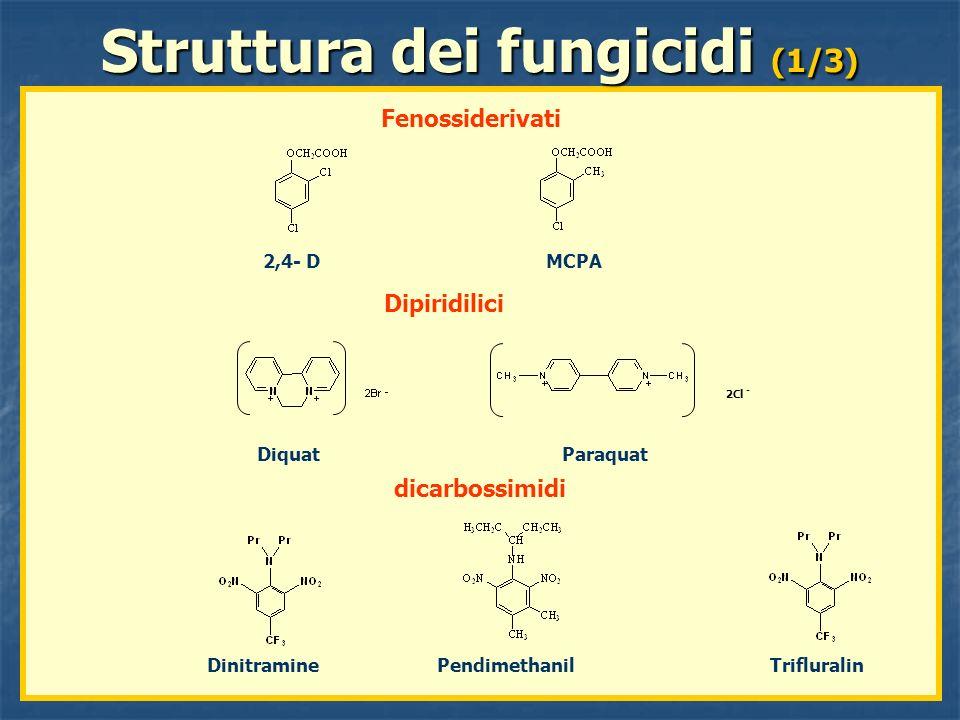 Fenossiderivati Dipiridilici dicarbossimidi 2,4- D MCPA Dinitramine Pendimethanil Trifluralin 2Cl - Diquat Paraquat Struttura dei fungicidi (1/3)