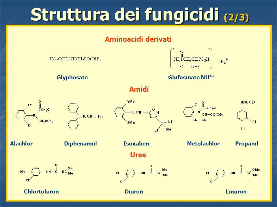 Glyphosate Glufosinate NH 4+ Struttura dei fungicidi (2/3) Aminoacidi derivati Alachlor Diphenamid Isoxaben Metolachlor Propanil Amidi Uree Chlortolur