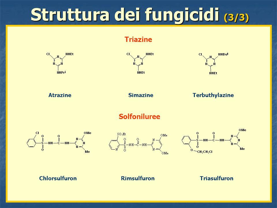 Atrazine Simazine Terbuthylazine Struttura dei fungicidi (3/3) Triazine Chlorsulfuron Rimsulfuron Triasulfuron Solfoniluree