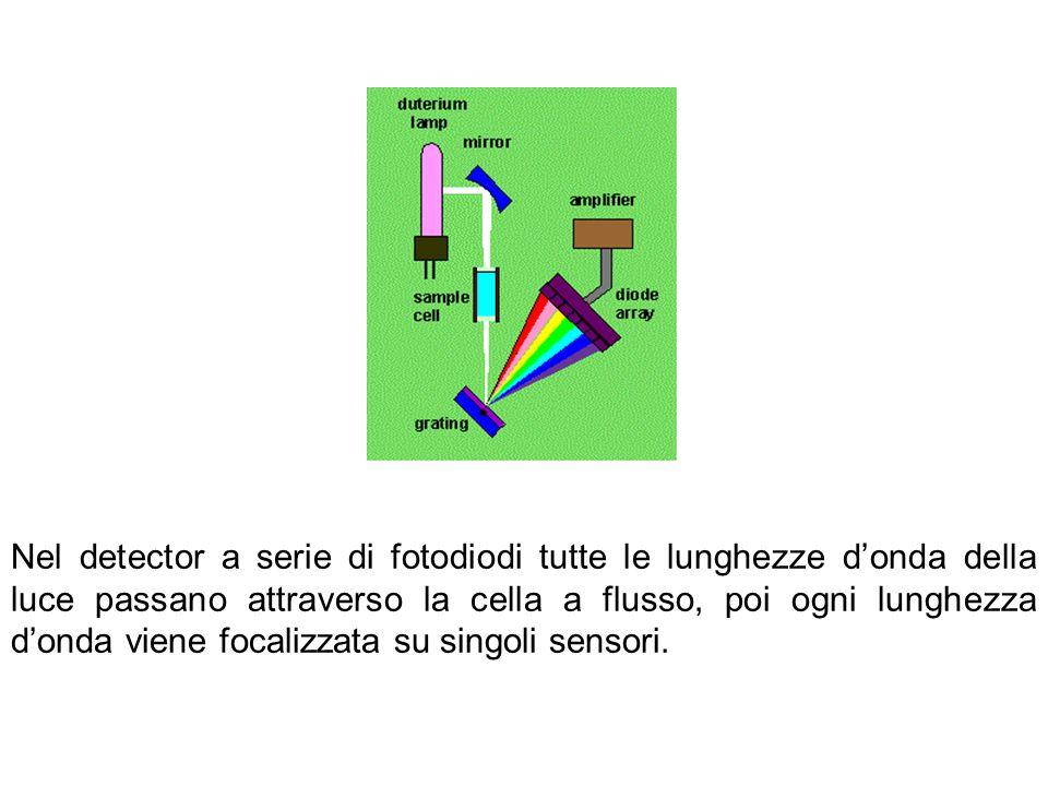 Nel detector a serie di fotodiodi tutte le lunghezze donda della luce passano attraverso la cella a flusso, poi ogni lunghezza donda viene focalizzata