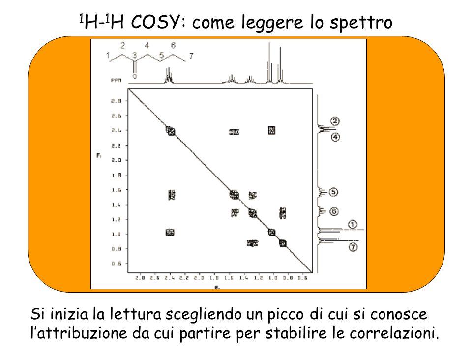 1 H- 1 H COSY: come leggere lo spettro Si inizia la lettura scegliendo un picco di cui si conosce lattribuzione da cui partire per stabilire le correlazioni.