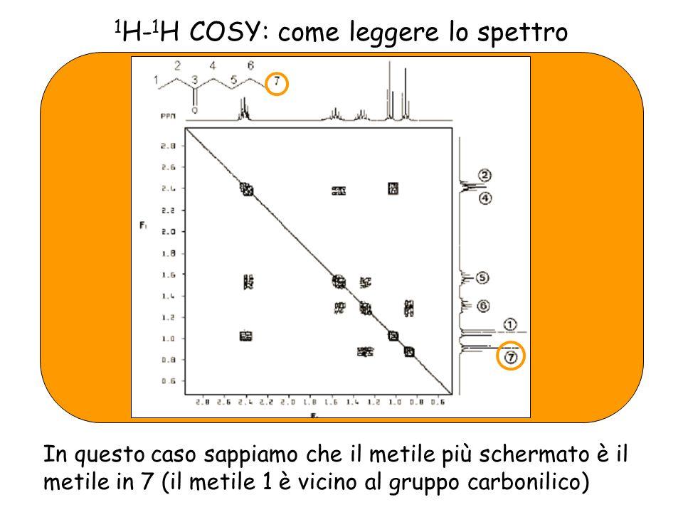 1 H- 1 H COSY: come leggere lo spettro In questo caso sappiamo che il metile più schermato è il metile in 7 (il metile 1 è vicino al gruppo carbonilico)