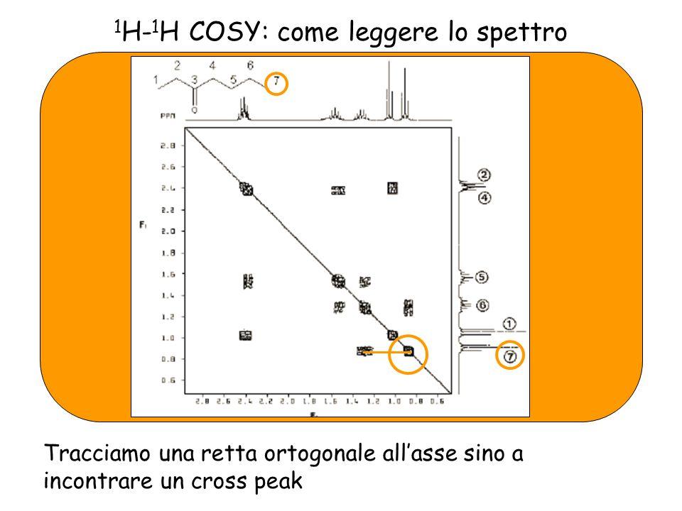 1 H- 1 H COSY: come leggere lo spettro Tracciamo una retta ortogonale allasse sino a incontrare un cross peak