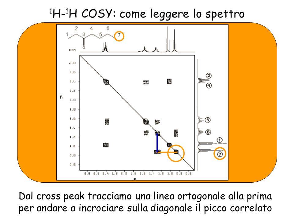 1 H- 1 H COSY: come leggere lo spettro Dal cross peak tracciamo una linea ortogonale alla prima per andare a incrociare sulla diagonale il picco correlato