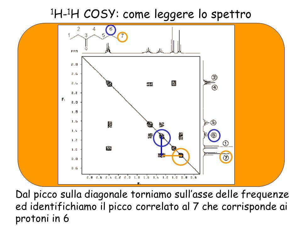 1 H- 1 H COSY: come leggere lo spettro Dal picco sulla diagonale torniamo sullasse delle frequenze ed identifichiamo il picco correlato al 7 che corrisponde ai protoni in 6