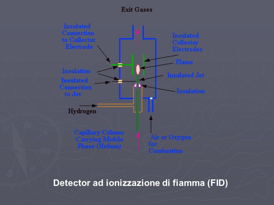 Detector ad ionizzazione di fiamma (FID)