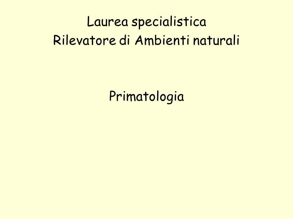 Programma del corso Definizione, classificazione e distribuzione dei primati La ricerca primatologica, excursus storico.