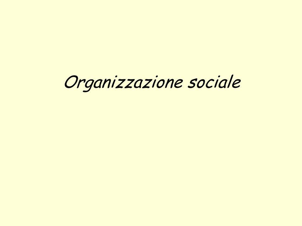 Lapprendimento sociale si avvale della: 1.Comunicazione non verbale, o linguaggio corporeo, o zoosemiotica; 2.Comunicazione verbale; 3.Comunicazione scritta.