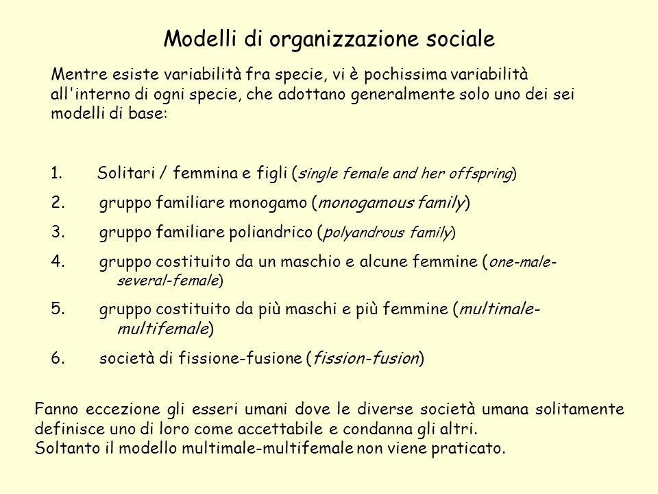 Modelli di organizzazione sociale Fanno eccezione gli esseri umani dove le diverse società umana solitamente definisce uno di loro come accettabile e condanna gli altri.