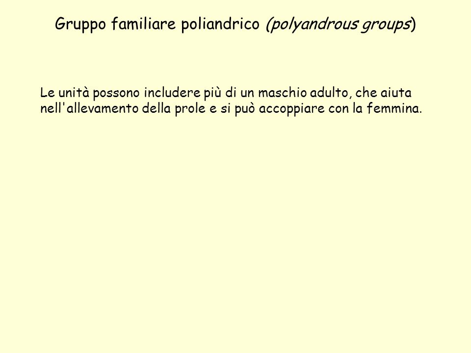 Uni-male / Multi-female groups ( harem groups) In questi gruppi ad un solo maschio corrispondono più femmine, con cui il maschio si accoppia regolarmente.