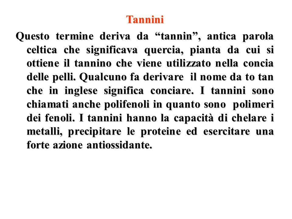 Tannini Questo termine deriva da tannin, antica parola celtica che significava quercia, pianta da cui si ottiene il tannino che viene utilizzato nella