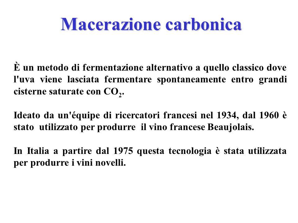 Macerazione carbonica È un metodo di fermentazione alternativo a quello classico dove l'uva viene lasciata fermentare spontaneamente entro grandi cist