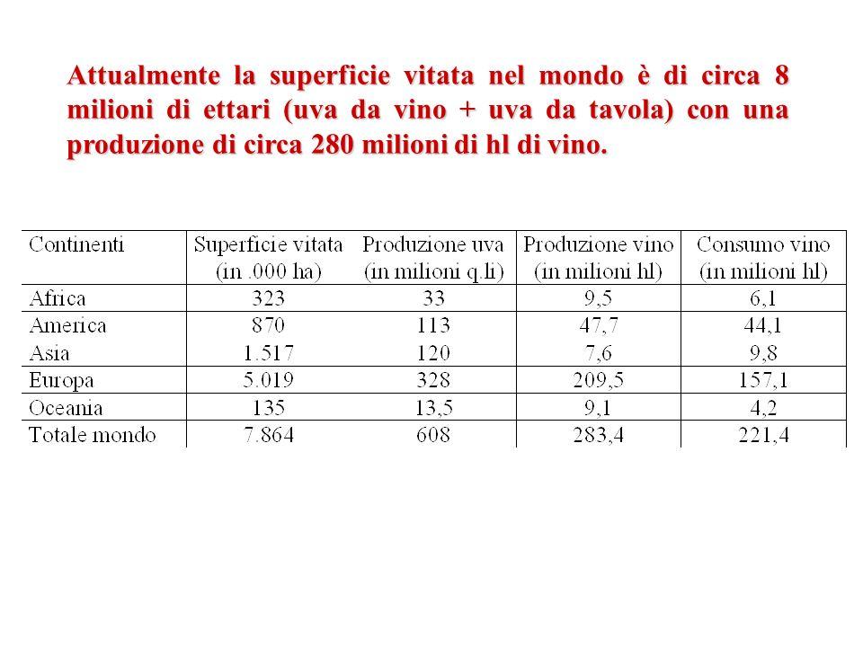 Attualmente la superficie vitata nel mondo è di circa 8 milioni di ettari (uva da vino + uva da tavola) con una produzione di circa 280 milioni di hl