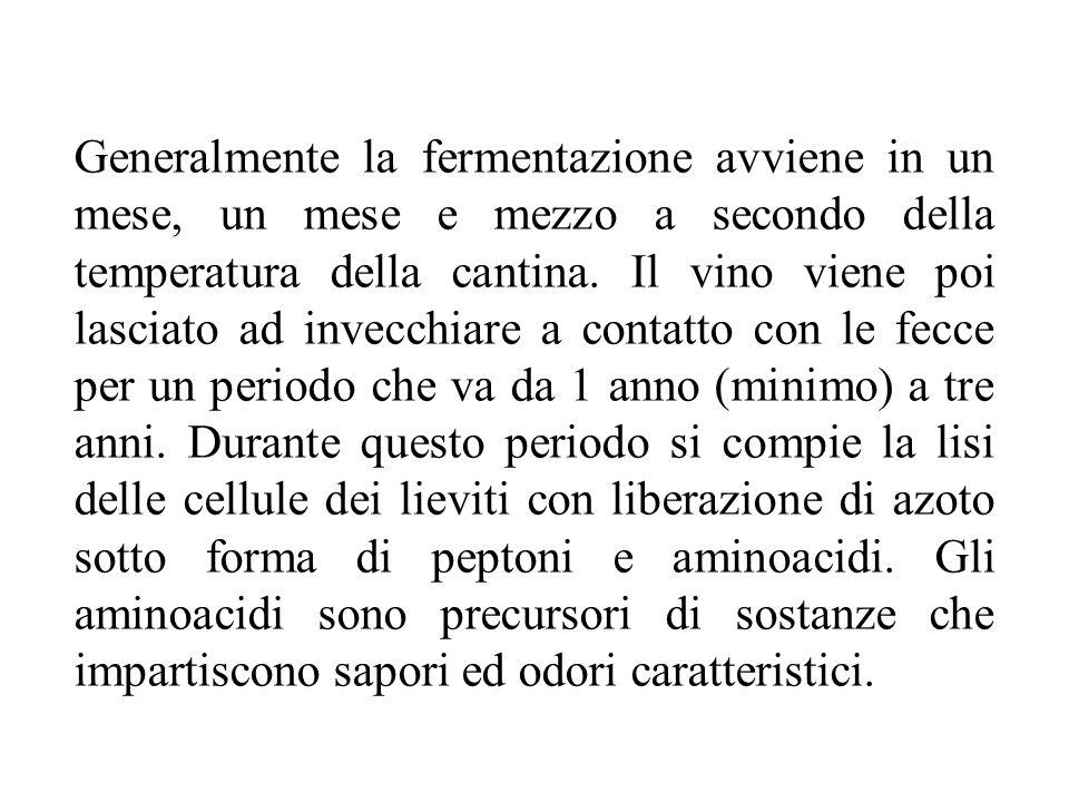 Generalmente la fermentazione avviene in un mese, un mese e mezzo a secondo della temperatura della cantina. Il vino viene poi lasciato ad invecchiare