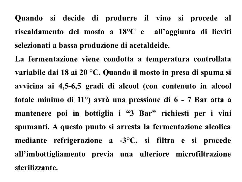 Quando si decide di produrre il vino si procede al riscaldamento del mosto a 18°C e allaggiunta di lieviti selezionati a bassa produzione di acetaldei