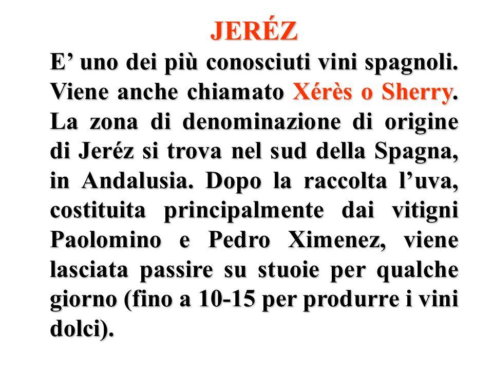JERÉZ E uno dei più conosciuti vini spagnoli. Viene anche chiamato Xérès o Sherry. La zona di denominazione di origine di Jeréz si trova nel sud della