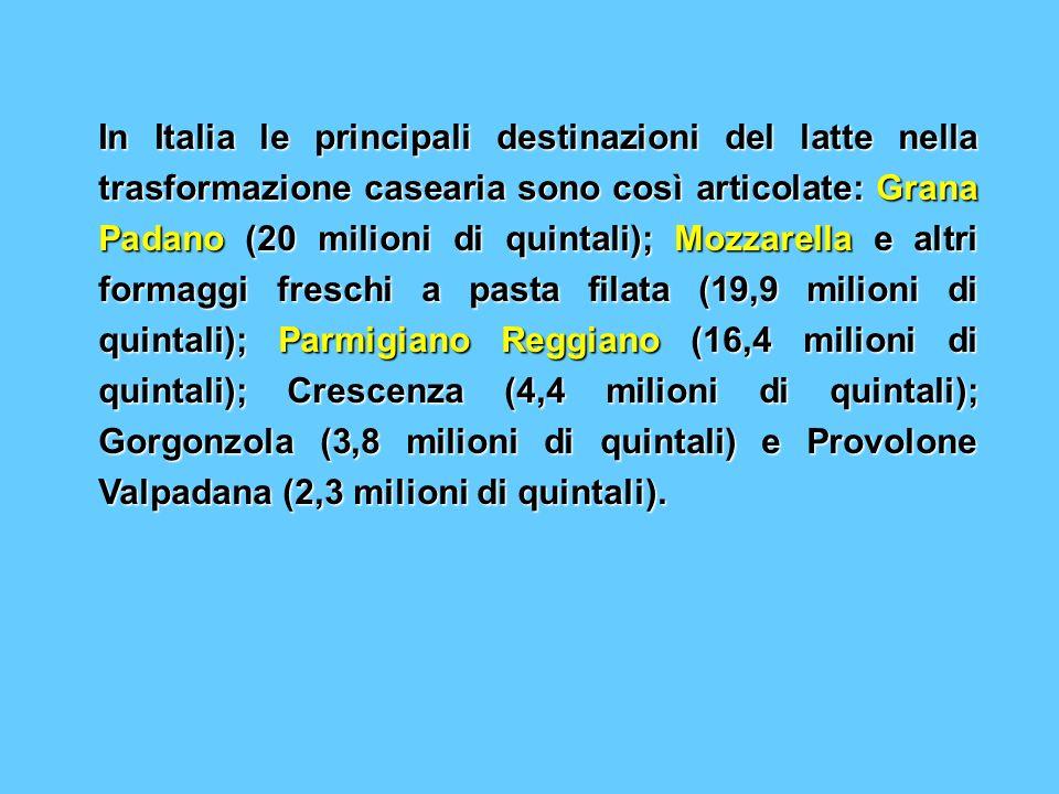 In Italia le principali destinazioni del latte nella trasformazione casearia sono così articolate: Grana Padano (20 milioni di quintali); Mozzarella e