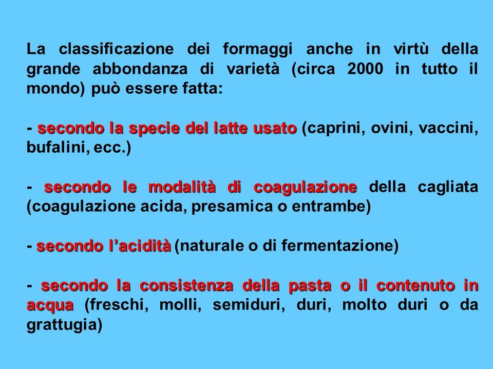 La classificazione dei formaggi anche in virtù della grande abbondanza di varietà (circa 2000 in tutto il mondo) può essere fatta: secondo la specie d