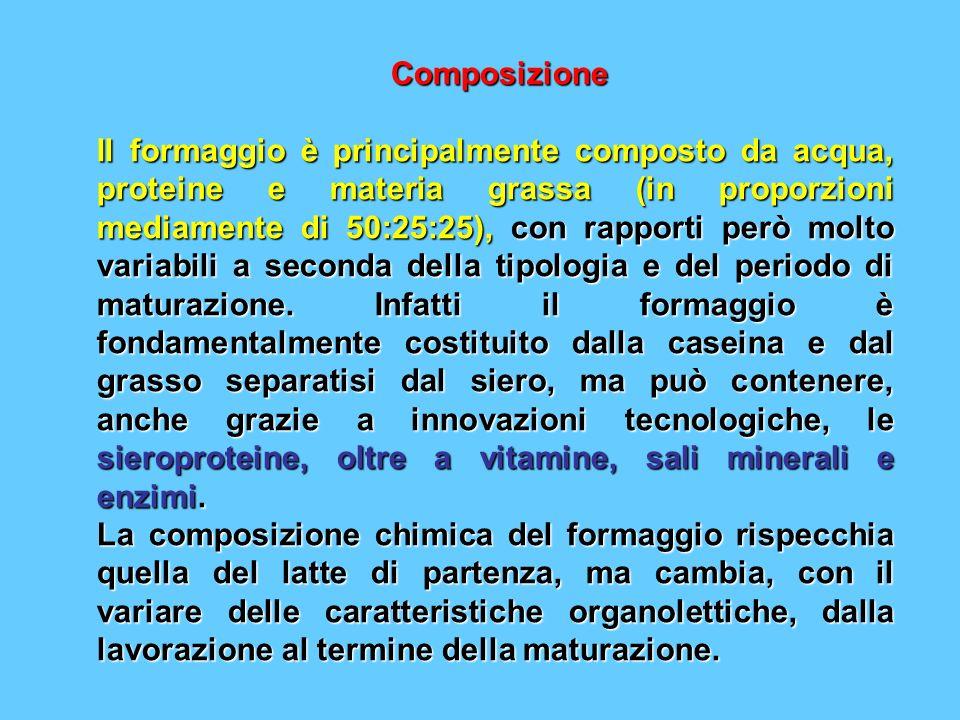 Composizione Composizione Il formaggio è principalmente composto da acqua, proteine e materia grassa (in proporzioni mediamente di 50:25:25), con rapp