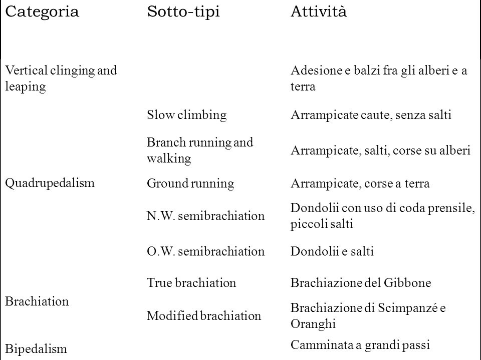CategoriaSotto-tipiAttività Vertical clinging and leaping Adesione e balzi fra gli alberi e a terra Quadrupedalism Slow climbingArrampicate caute, senza salti Branch running and walking Arrampicate, salti, corse su alberi Ground runningArrampicate, corse a terra N.W.