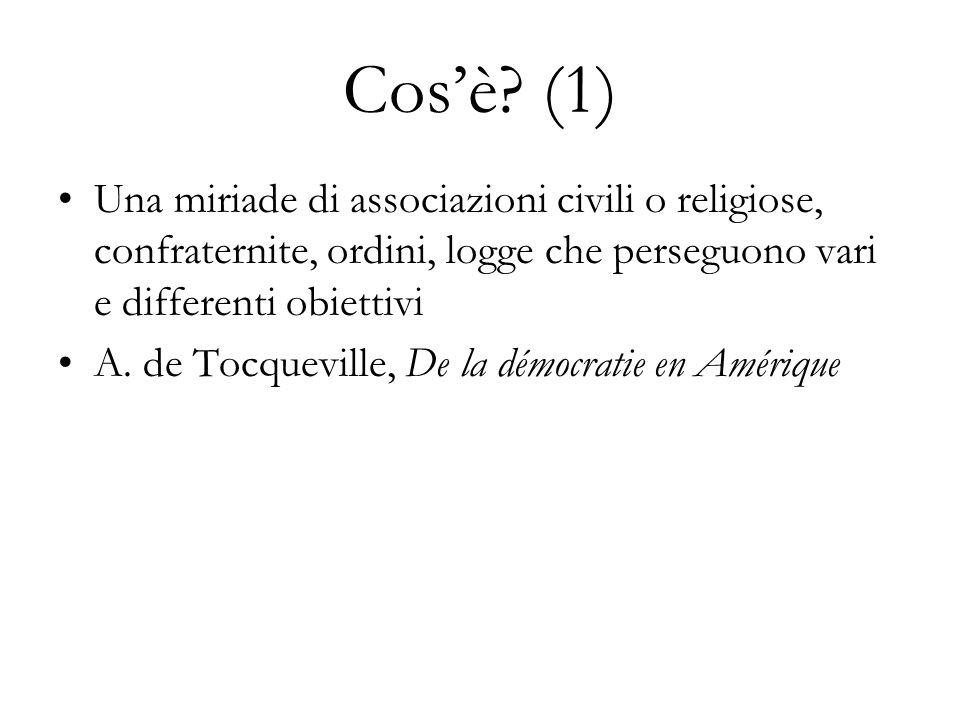 Cosè? (1) Una miriade di associazioni civili o religiose, confraternite, ordini, logge che perseguono vari e differenti obiettivi A. de Tocqueville, D