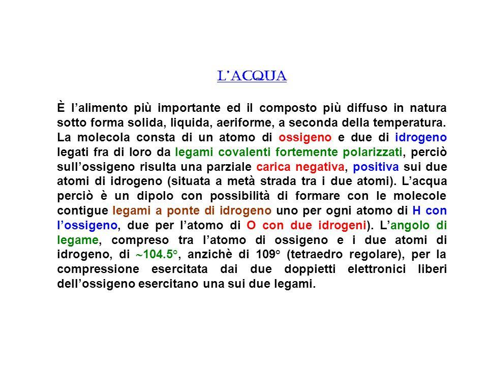 LACQUA È lalimento più importante ed il composto più diffuso in natura sotto forma solida, liquida, aeriforme, a seconda della temperatura. La molecol
