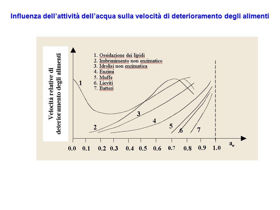 Influenza dellattività dellacqua sulla velocità di deterioramento degli alimenti