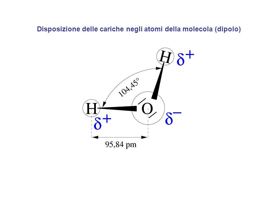 Disposizione delle cariche negli atomi della molecola (dipolo)