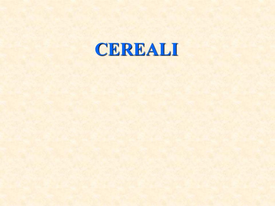 Con il nome di cereali si comprendono diverse specie tutte appartenenti alla famiglia delle Graminacee, ad eccezione del grano saraceno che appartiene alla famiglia delle Poligonacee, ormai una coltura minore.