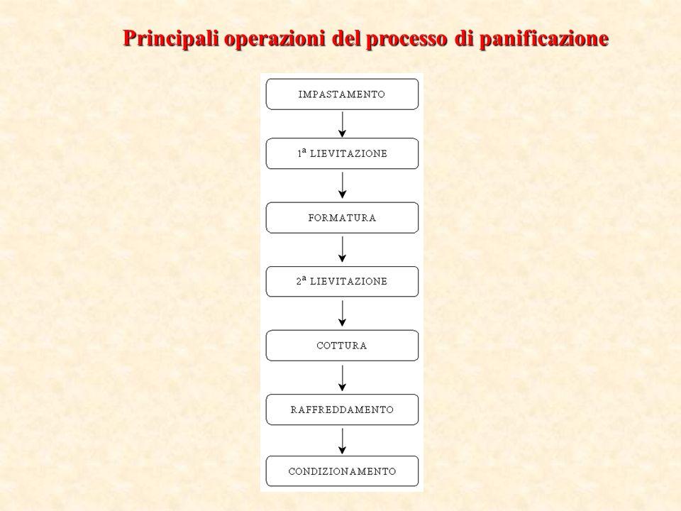 Principali operazioni del processo di panificazione