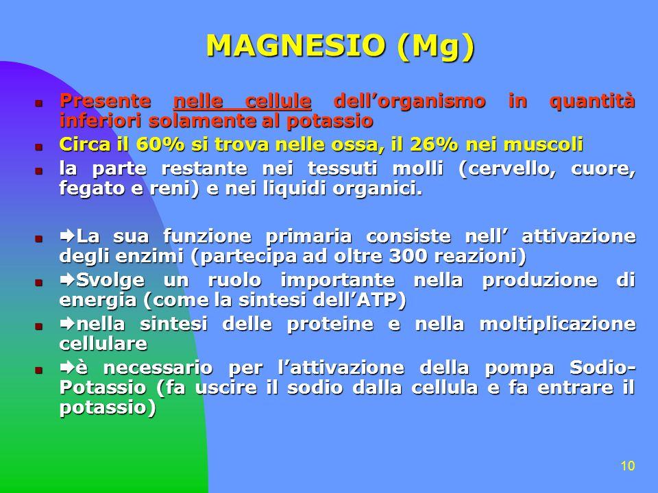 10 MAGNESIO (Mg) Presente nelle cellule dellorganismo in quantità inferiori solamente al potassio Presente nelle cellule dellorganismo in quantità inferiori solamente al potassio Circa il 60% si trova nelle ossa, il 26% nei muscoli Circa il 60% si trova nelle ossa, il 26% nei muscoli la parte restante nei tessuti molli (cervello, cuore, fegato e reni) e nei liquidi organici.